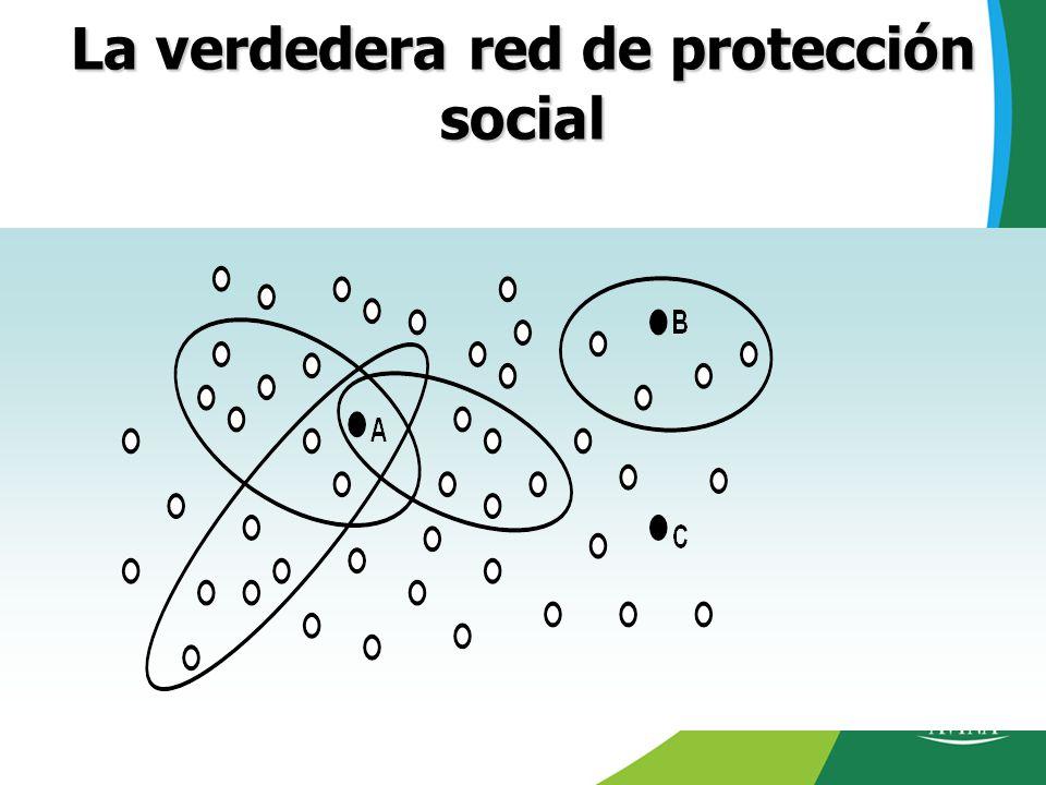 La verdedera red de protección social