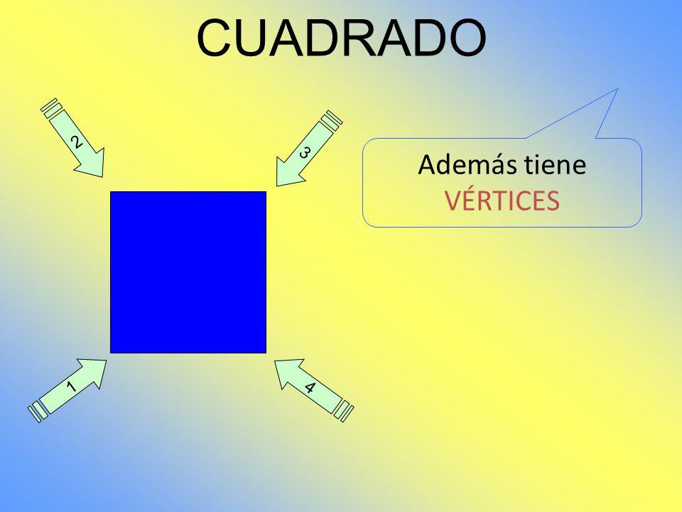 CUADRADO 1 4 2 3 El cuadrado es un polígono de cuatro LADOS iguales, los cuales son paralelos.