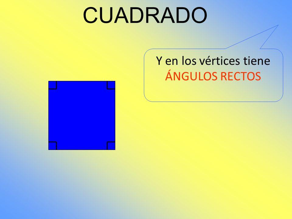 CUADRADO Además tiene VÉRTICES 2 1 4 3