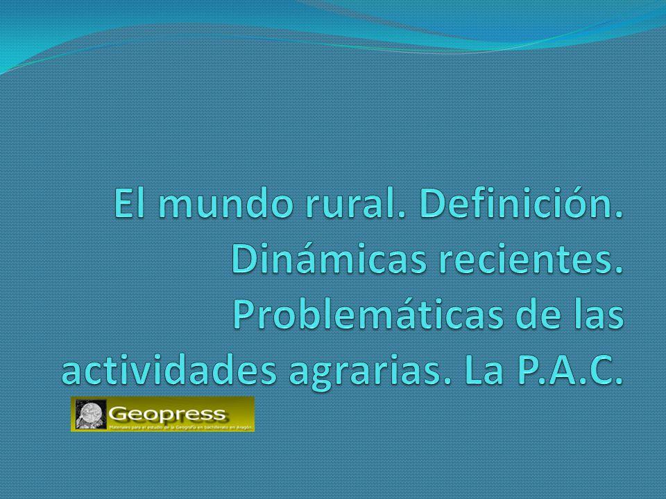 El mundo rural DEFINICIÓN DE ESPACIO RURAL 1.Es un espacio amplio y continuo, con baja densidad de población.