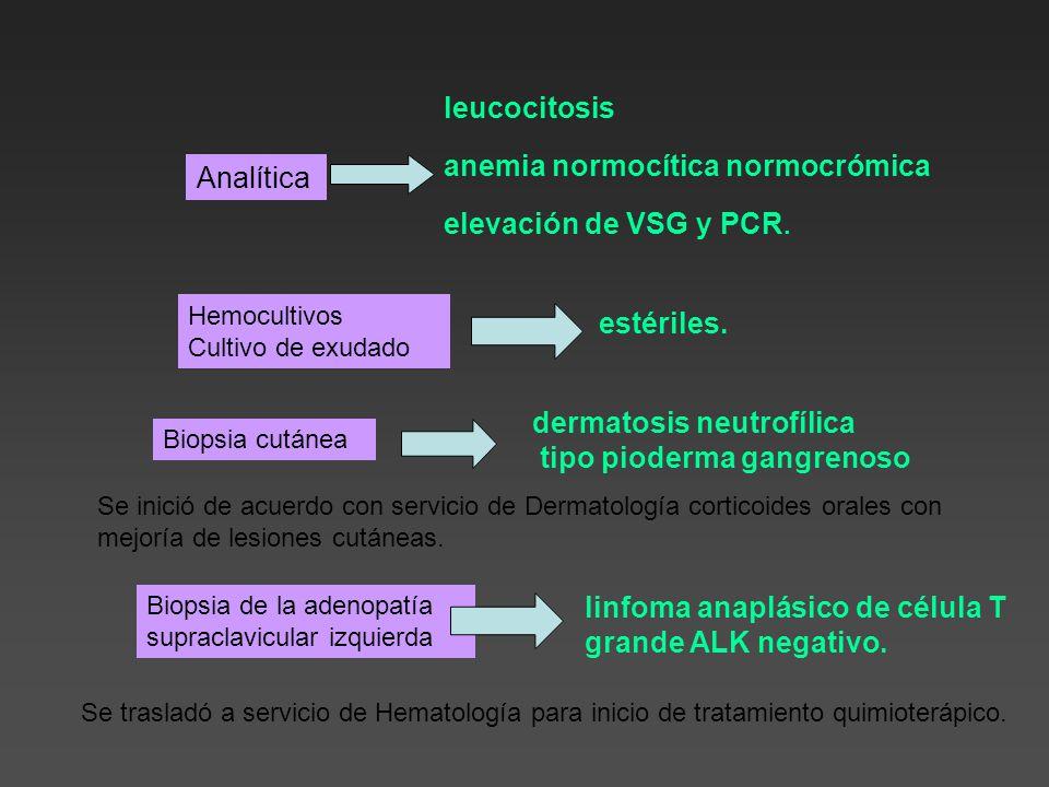 Hemocultivos Cultivo de exudado Analítica leucocitosis anemia normocítica normocrómica elevación de VSG y PCR.