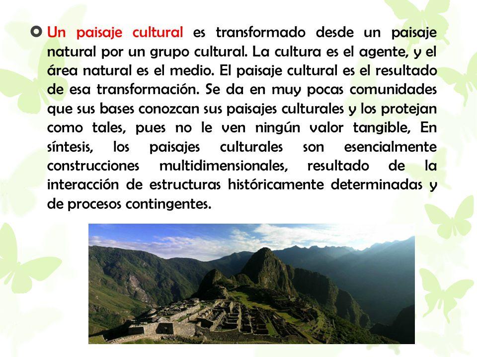  Un paisaje cultural es transformado desde un paisaje natural por un grupo cultural. La cultura es el agente, y el área natural es el medio. El paisa