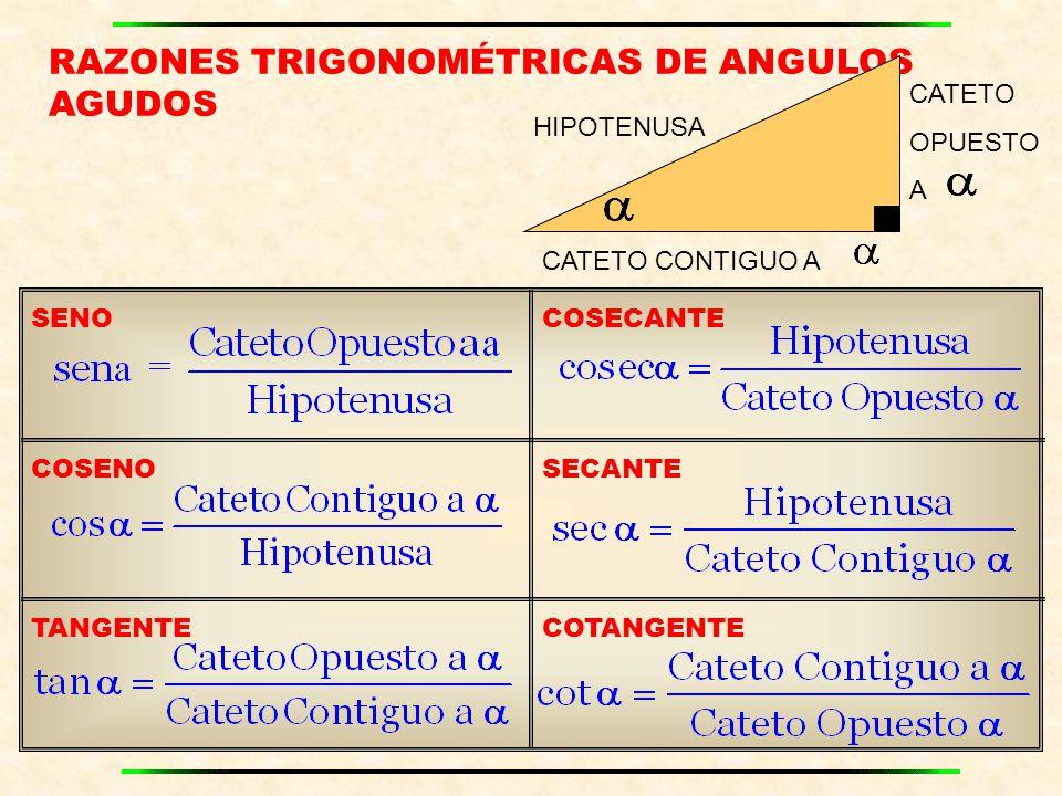 RAZONES TRIGONOMÉTRICAS DE ANGULOS AGUDOS CATETO OPUESTO A CATETO CONTIGUO A HIPOTENUSA SENOCOSECANTE COSENOSECANTE TANGENTECOTANGENTE