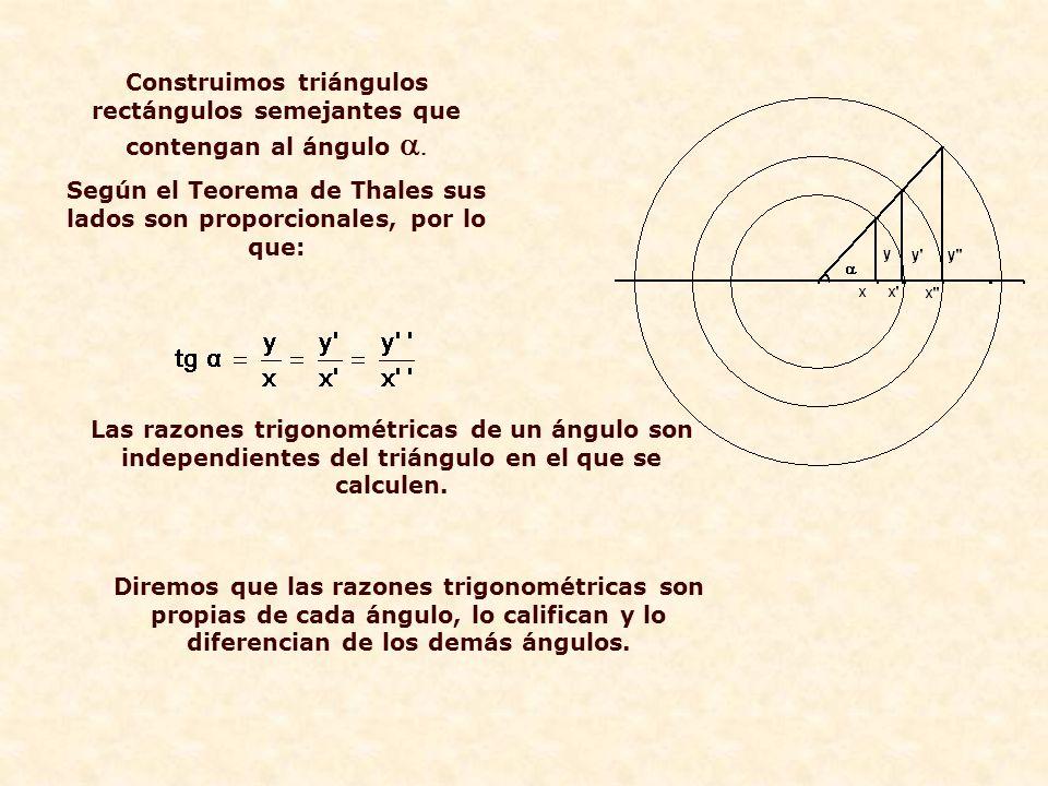 Construimos triángulos rectángulos semejantes que contengan al ángulo   Según el Teorema de Thales sus lados son proporcionales, por lo que:  Las razones trigonométricas de un ángulo son independientes del triángulo en el que se calculen.