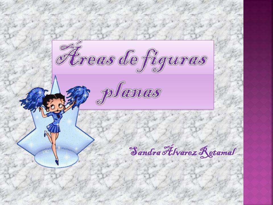 Sandra Álvarez Retamal