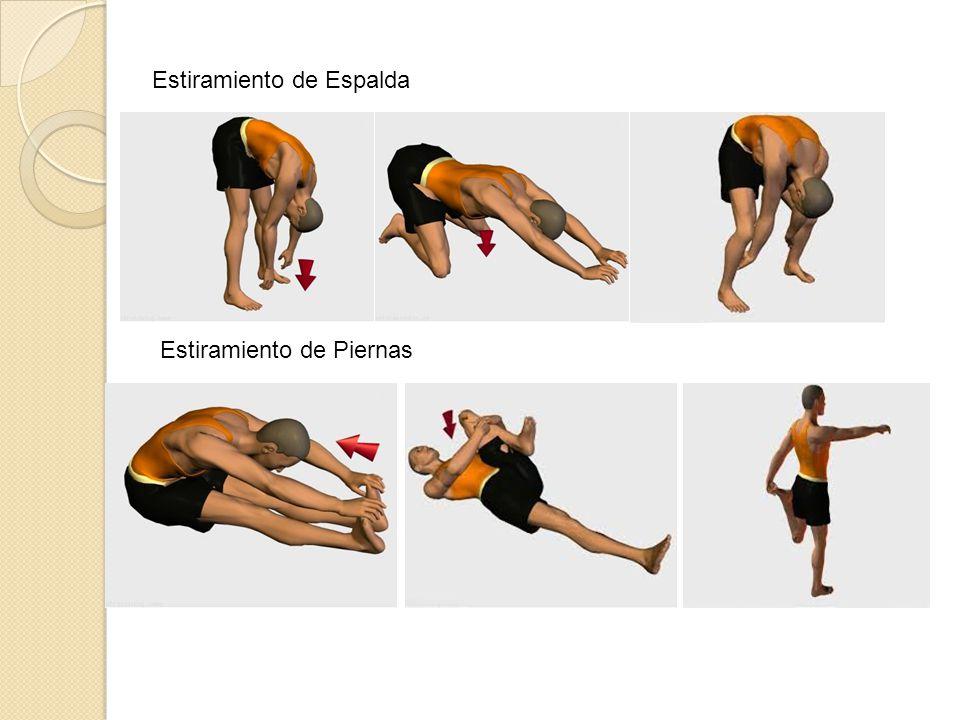Fase Central (FC): En la fase central de nuestra rutina de ejercicios Es donde veremos una serie de ejercicio donde fortaleceremos las Diferentes partes de nuestro cuerpo, nos enfocaremos esencialmente En fortalecer partes esenciales que usaremos continuamente en nuestra Labor.