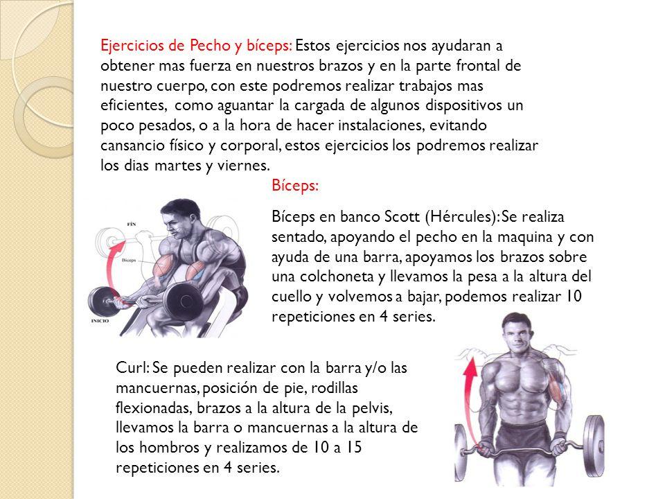 Pecho: Flexiones de pecho: es un ejercicio básico que podemos realizar en cualquier momento, nos tiramos al piso boca abajo, nos apoyamos en las palmas de las mano y punta de los pies bajando y subiendo, solo haciendo el movimiento en los codos, según el desempeño físico de la persona se pueden hacer de 10 a 100 repeticiones por serie.