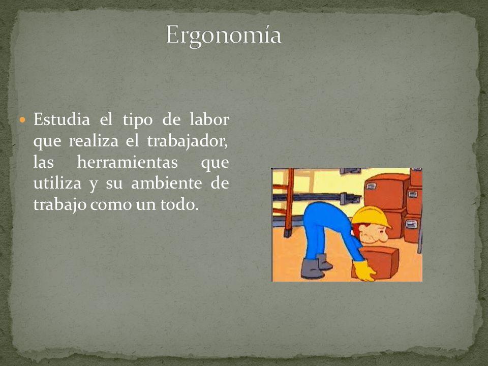 Estudia el tipo de labor que realiza el trabajador, las herramientas que utiliza y su ambiente de trabajo como un todo.