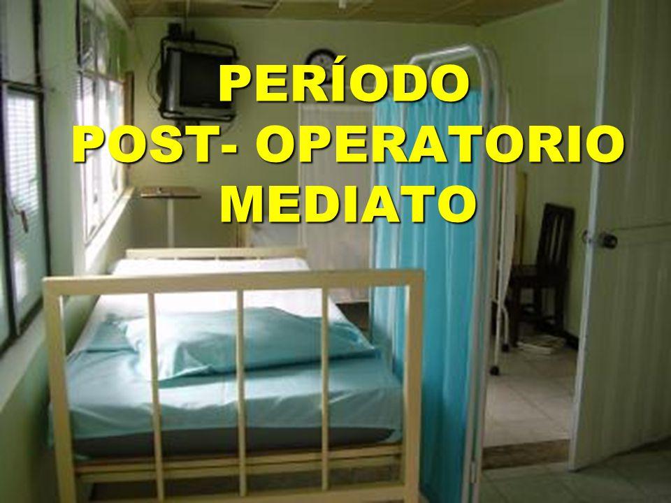PERÍODO POST- OPERATORIO MEDIATO PERÍODO POST- OPERATORIO MEDIATO