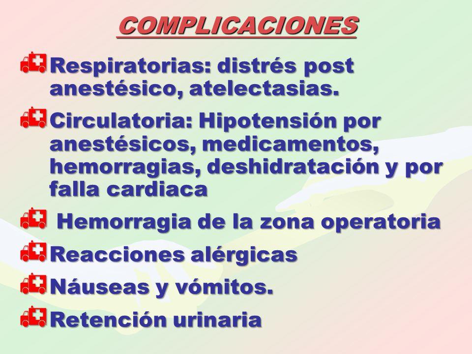 COMPLICACIONES  Respiratorias: distrés post anestésico, atelectasias.  Circulatoria: Hipotensión por anestésicos, medicamentos, hemorragias, deshidr