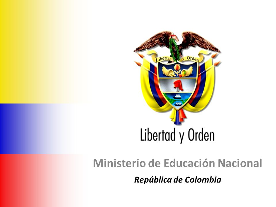 Bogotá, Enero 31 de 2008 Ministerio de Educación Nacional