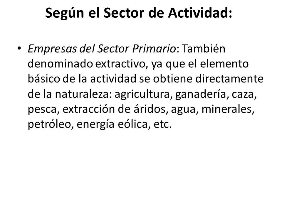 Según el Sector de Actividad: Empresas del Sector Primario: También denominado extractivo, ya que el elemento básico de la actividad se obtiene directamente de la naturaleza: agricultura, ganadería, caza, pesca, extracción de áridos, agua, minerales, petróleo, energía eólica, etc.