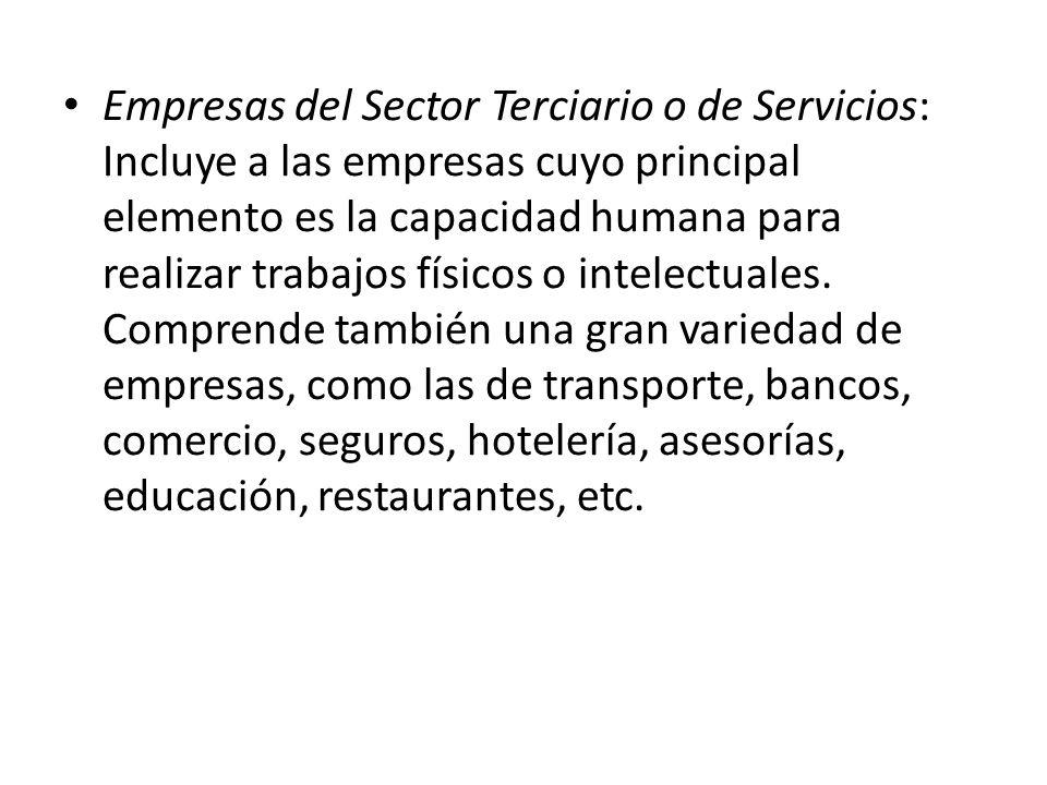 Empresas del Sector Terciario o de Servicios: Incluye a las empresas cuyo principal elemento es la capacidad humana para realizar trabajos físicos o intelectuales.