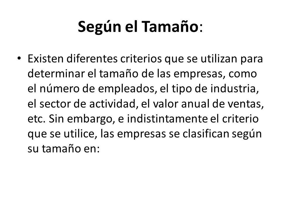 Según el Tamaño: Existen diferentes criterios que se utilizan para determinar el tamaño de las empresas, como el número de empleados, el tipo de industria, el sector de actividad, el valor anual de ventas, etc.