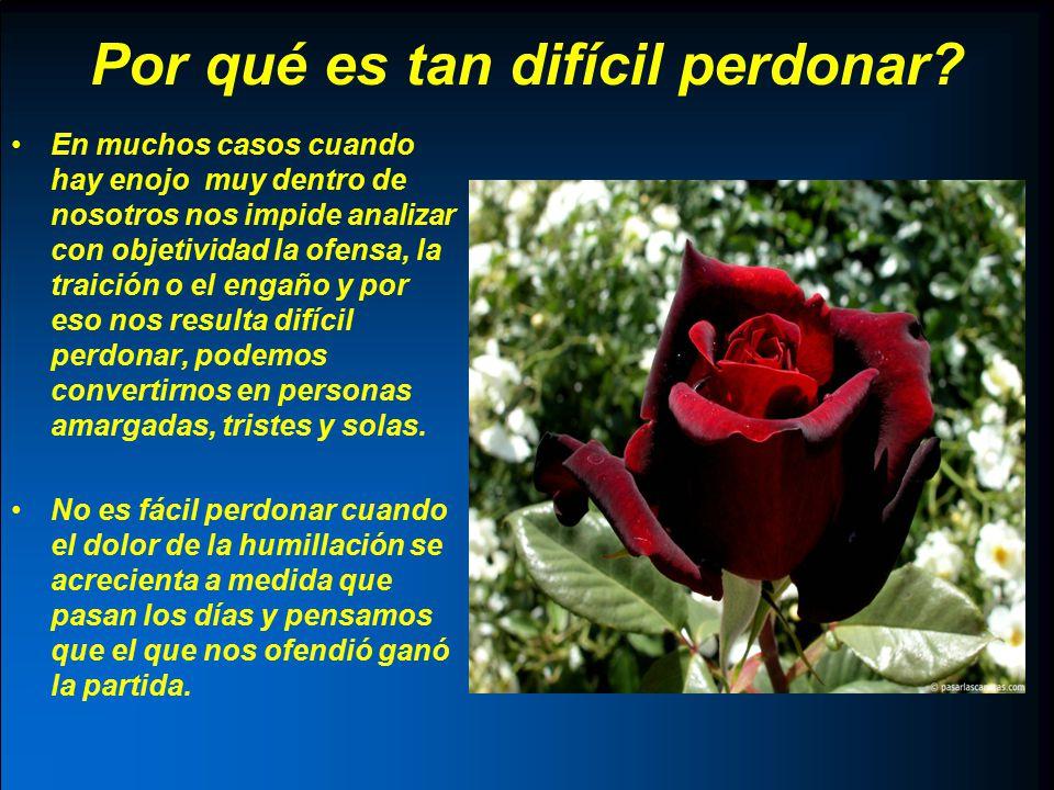 Pero… Perdonar no es excusar.Perdonar a una persona no significa aprobar lo que hizo esa persona.