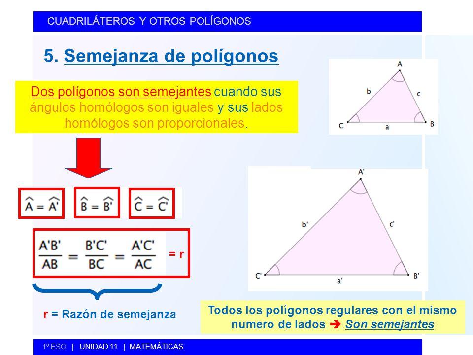 5. Semejanza de polígonos CUADRILÁTEROS Y OTROS POLÍGONOS 1º ESO   UNIDAD 11   MATEMÁTICAS Dos polígonos son semejantes cuando sus ángulos homólogos s