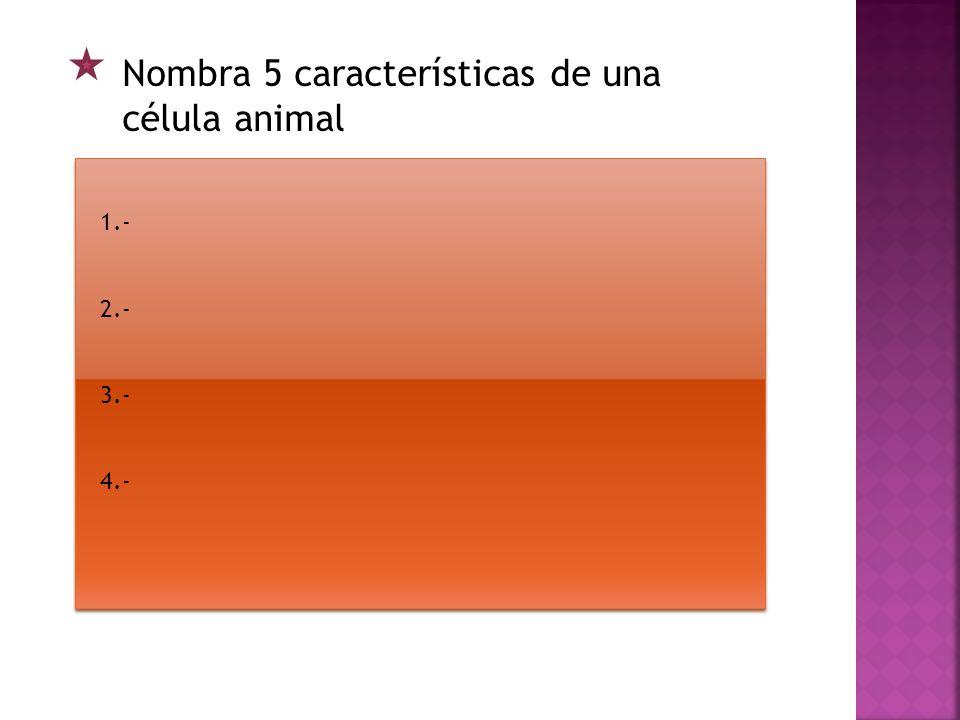 Define los siguientes conceptos: Aparato de Golgi: Núcleo: Citoplasma: