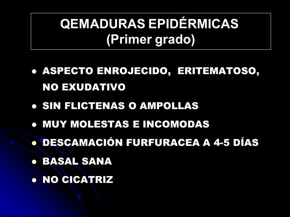 SE CARACTERIZAN POR FLICTENAS O AMPOLLAS EXUDATIVAS E HIPERÉMICAS CONSERVAN LOS FOLÍCULOS PIELOSEBÁCEOS SI SE RECORTAN Y RETIRAN LAS FLICTENAS ASPECTO BLANQUECINO Y EDEMATOSO CON MÉTODOS APROPIADOS CURAN EN 8-10 DÍAS SIN CICATRIZ SI SE PRODUCE INFECCIÓN PUEDE IMPEDIR SU NORMAL EPITELIZACIÓN Y PROFUNDIZAR SON DOLOROSAS Y LOS FOLÍCULOS PIELOSEBÁCEOS SON RESISTENTES A LA TRACCIÓN DÉRMICAS SUPERFICIALES (2º grado superficial)