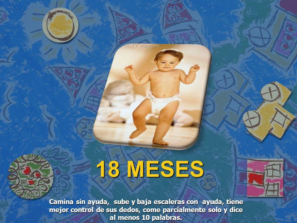 18 MESES Camina sin ayuda, sube y baja escaleras con ayuda, tiene mejor control de sus dedos, come parcialmente solo y dice al menos 10 palabras.
