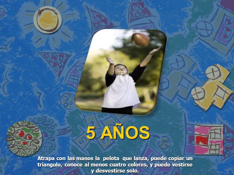5 AÑOS Atrapa con las manos la pelota que lanza, puede copiar un triangulo, conoce al menos cuatro colores, y puede vestirse y desvestirse solo.