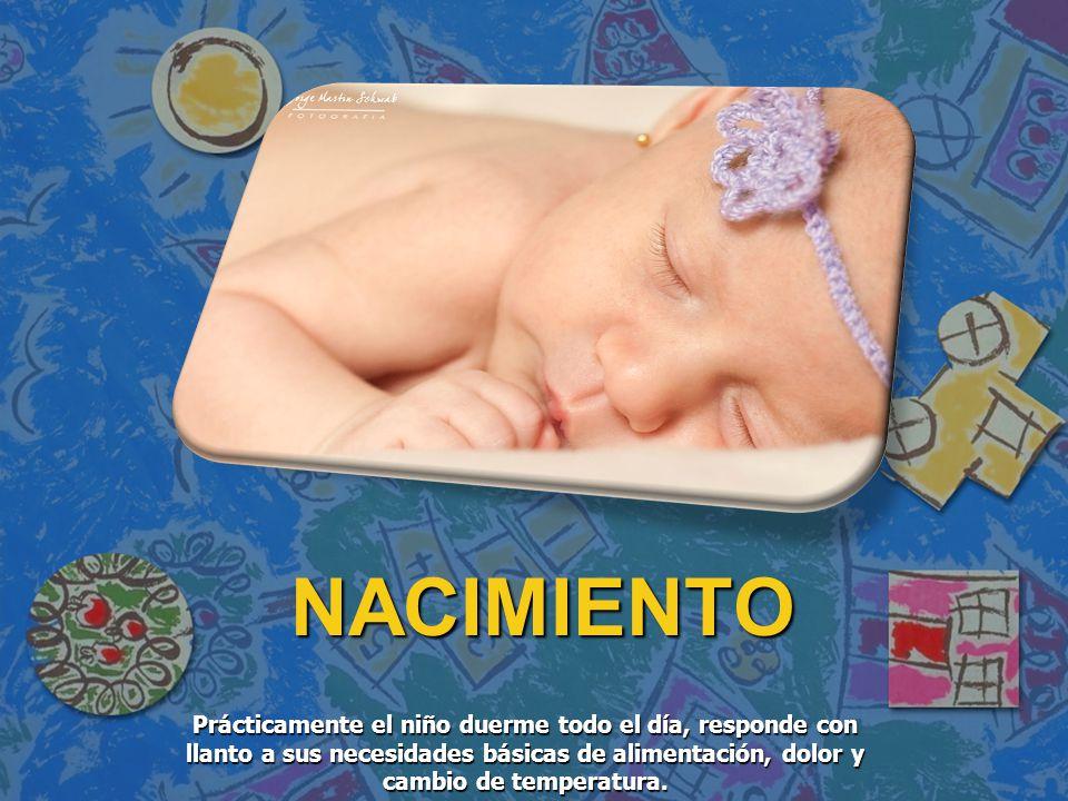 NACIMIENTO NACIMIENTO Prácticamente el niño duerme todo el día, responde con llanto a sus necesidades básicas de alimentación, dolor y cambio de tempe
