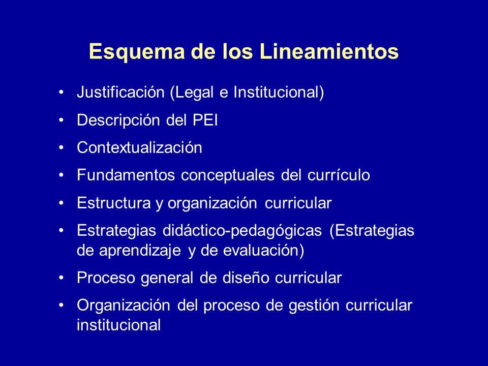 Esquema de los Lineamientos Justificación (Legal e Institucional) Descripción del PEI Contextualización Fundamentos conceptuales del currículo Estruct
