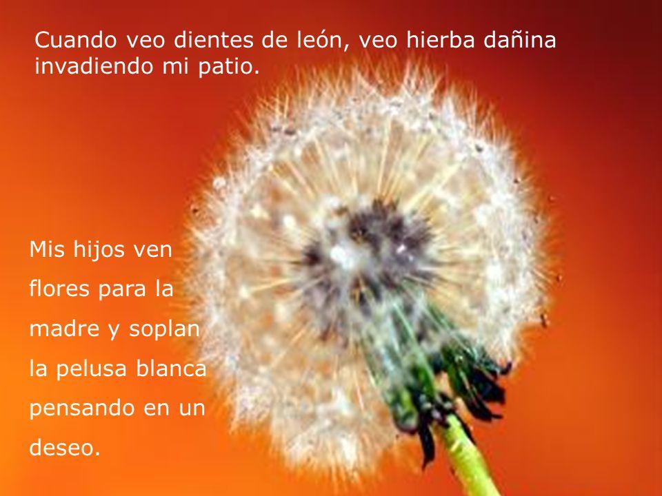Por los Ojos de Un Niño (Autor Desconocido) http://Presentaciones-PowerPoint.com/