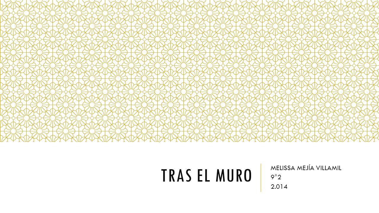 TRAS EL MURO MELISSA MEJÍA VILLAMIL 9°2 2.014