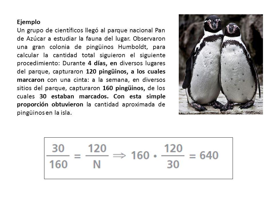Ejemplo Un grupo de científicos llegó al parque nacional Pan de Azúcar a estudiar la fauna del lugar. Observaron una gran colonia de pingüinos Humbold