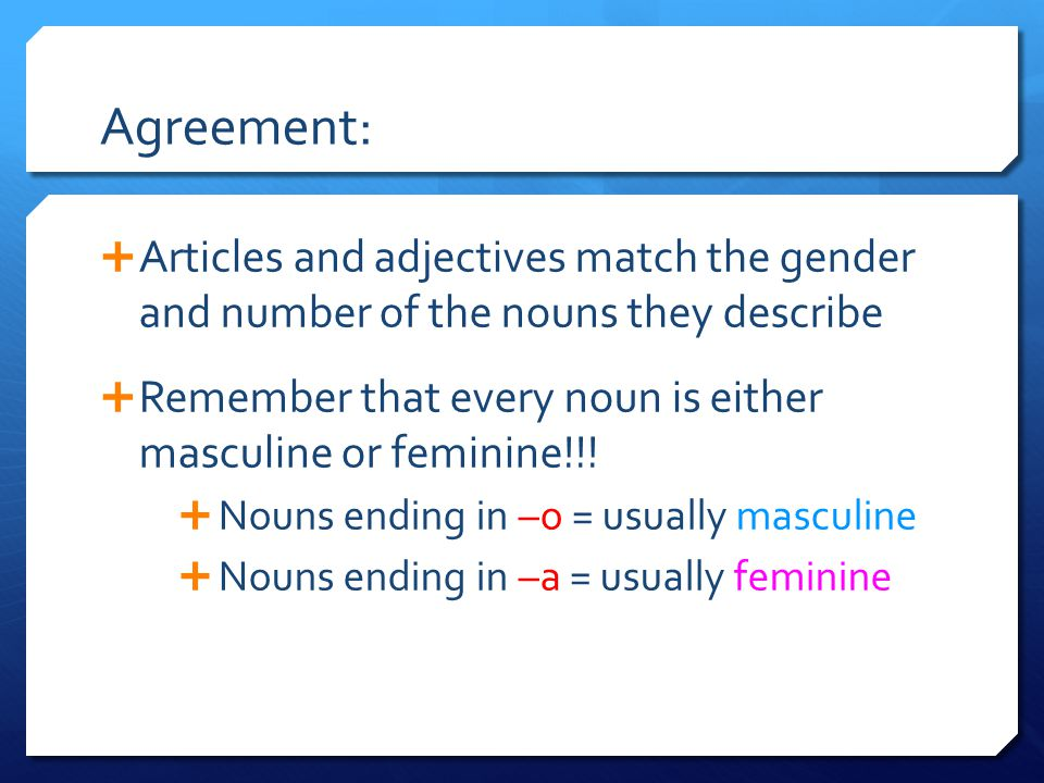 Agreement:  Articles and adjectives match the gender and number of the nouns they describe  Remember that every noun is either masculine or feminine!!.