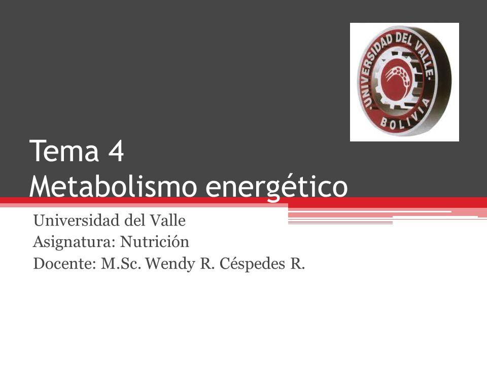 Tema 4 Metabolismo energético Universidad del Valle Asignatura: Nutrición Docente: M.Sc. Wendy R. Céspedes R.