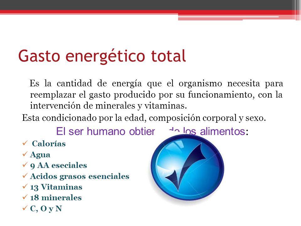 Gasto energético total Es la cantidad de energía que el organismo necesita para reemplazar el gasto producido por su funcionamiento, con la intervenci