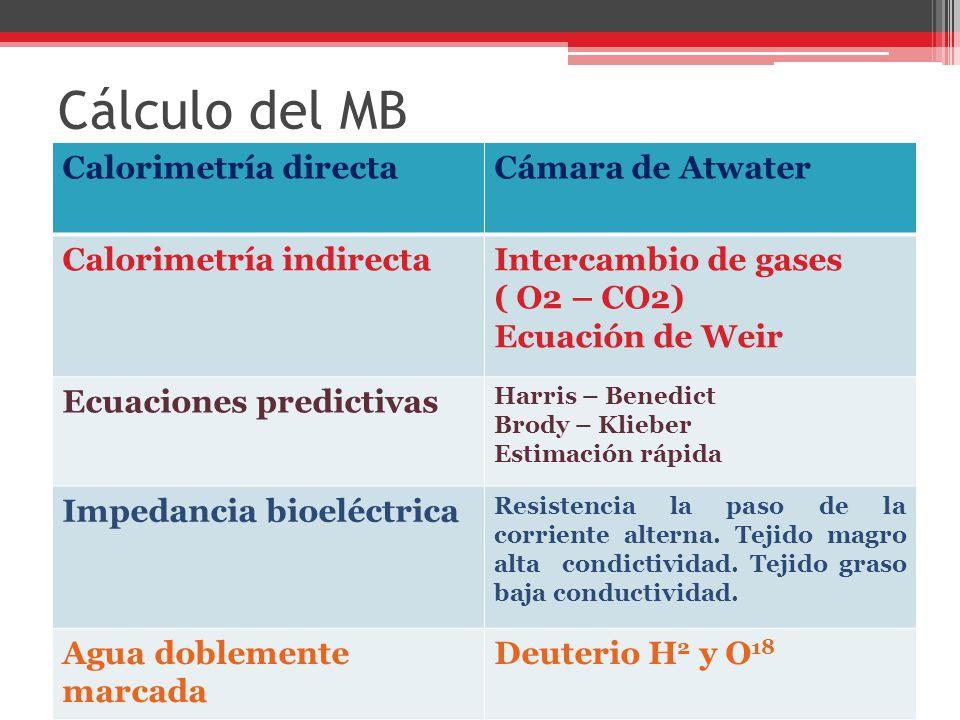 Cálculo del MB Calorimetría directaCámara de Atwater Calorimetría indirectaIntercambio de gases ( O2 – CO2) Ecuación de Weir Ecuaciones predictivas Ha