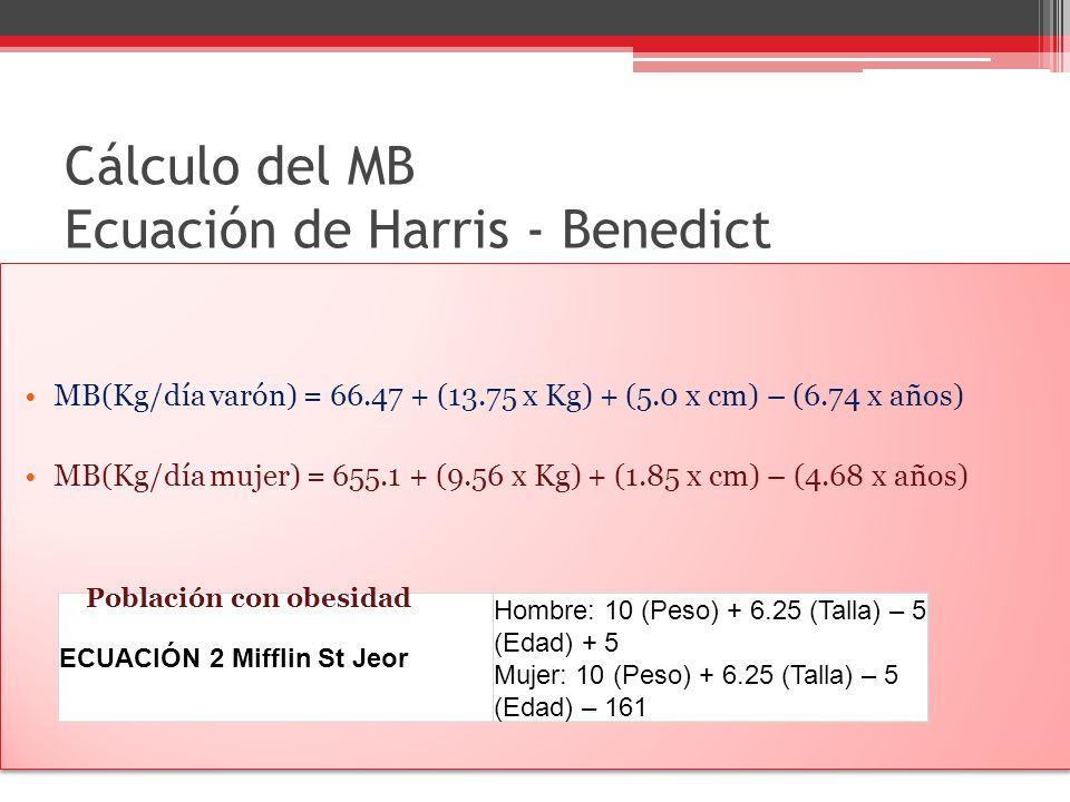 Cálculo del MB Ecuación de Harris - Benedict MB(Kg/día varón) = 66.47 + (13.75 x Kg) + (5.0 x cm) – (6.74 x años) MB(Kg/día mujer) = 655.1 + (9.56 x K