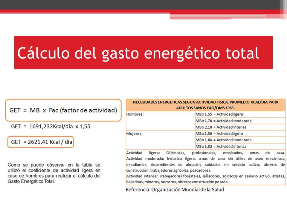Cálculo del gasto energético total