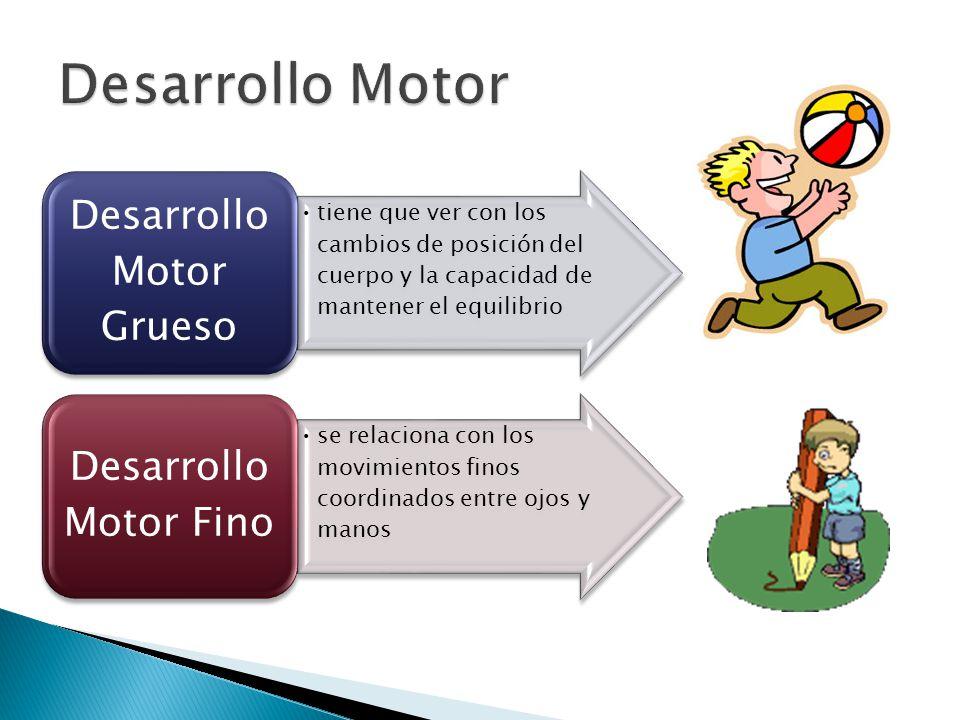tiene que ver con los cambios de posición del cuerpo y la capacidad de mantener el equilibrio Desarrollo Motor Grueso se relaciona con los movimientos
