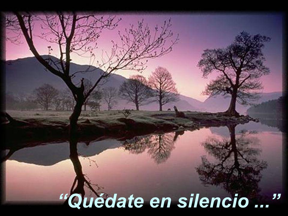 """""""Quédate en silencio delante del Señor..."""""""