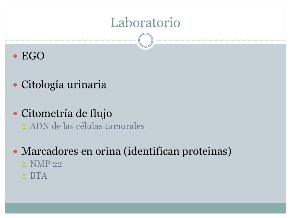 Laboratorio EGO Citología urinaria Citometría de flujo  ADN de las células tumorales Marcadores en orina (identifican proteinas)  NMP 22  BTA