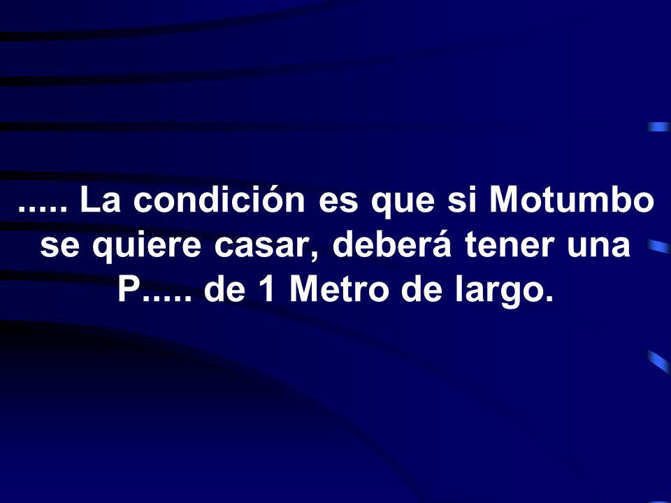 ..... La condición es que si Motumbo se quiere casar, deberá tener una P..... de 1 Metro de largo.