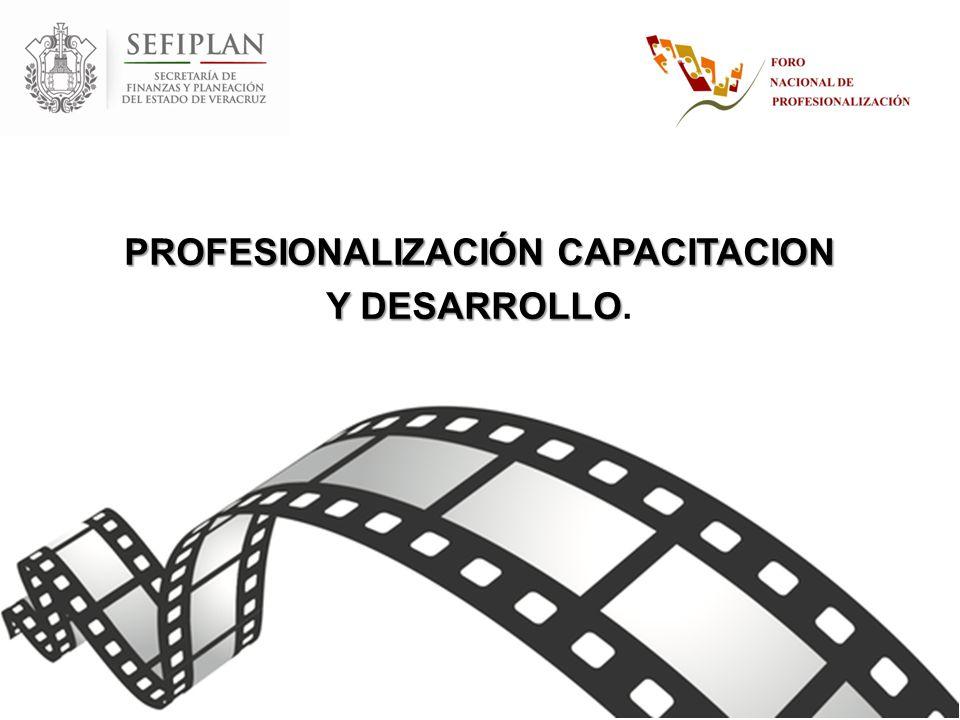 PROFESIONALIZACIÓN CAPACITACION Y DESARROLLO Y DESARROLLO.