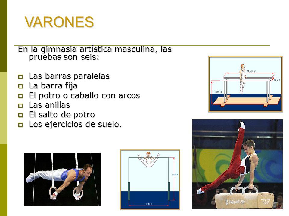 En la gimnasia artística masculina, las pruebas son seis:  Las barras paralelas  La barra fija  El potro o caballo con arcos  Las anillas  El salto de potro  Los ejercicios de suelo.