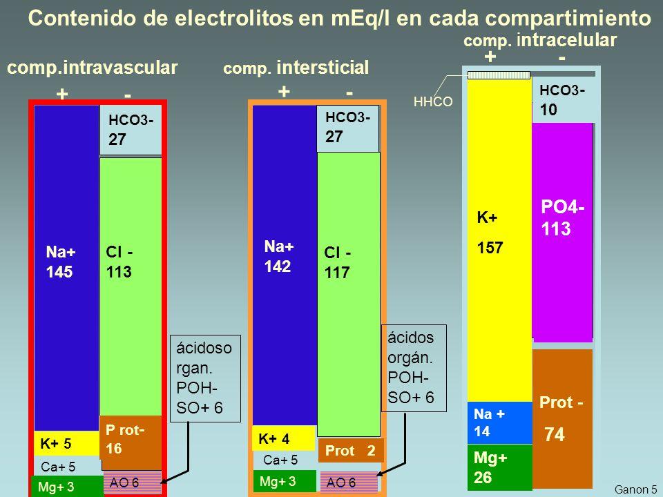 Contenido de electrolitos en mEq/l en cada compartimiento Na+ 145 Cl - 113 HCO3- 27 P rot - 16 K+ 5 Ca+ 5 Mg+ 3 + - AO 6 ácidoso rgan.