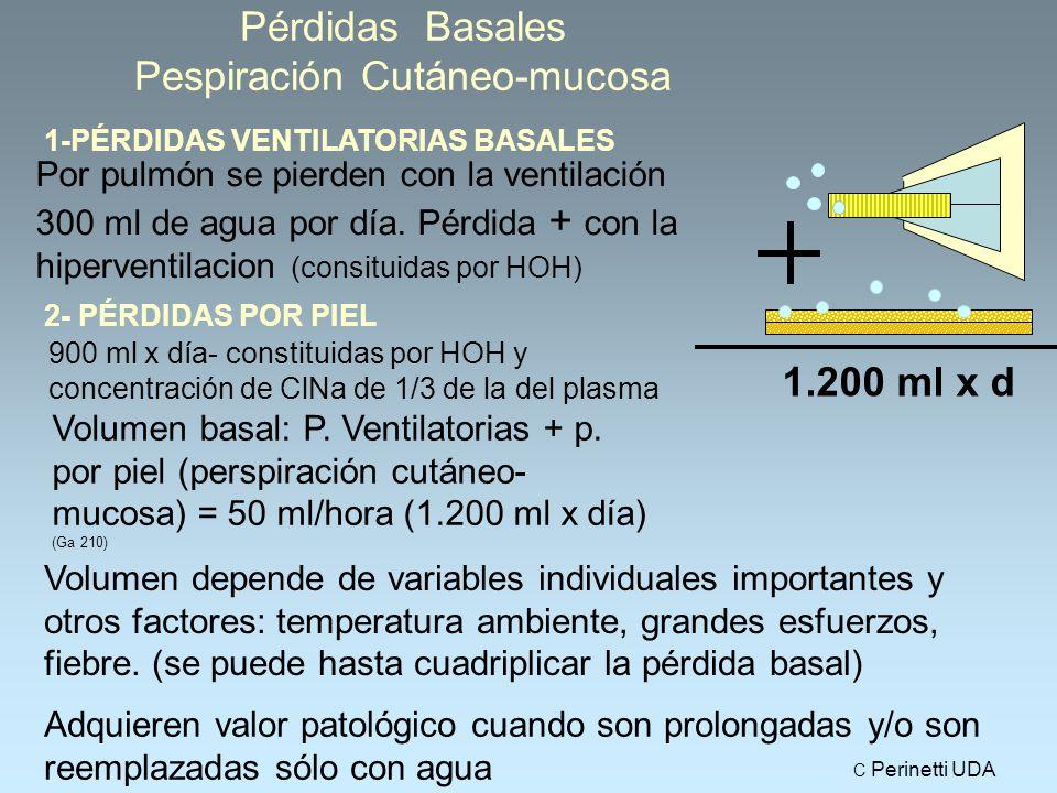 Pérdidas Basales Pespiración Cutáneo-mucosa 1-PÉRDIDAS VENTILATORIAS BASALES Por pulmón se pierden con la ventilación 300 ml de agua por día.