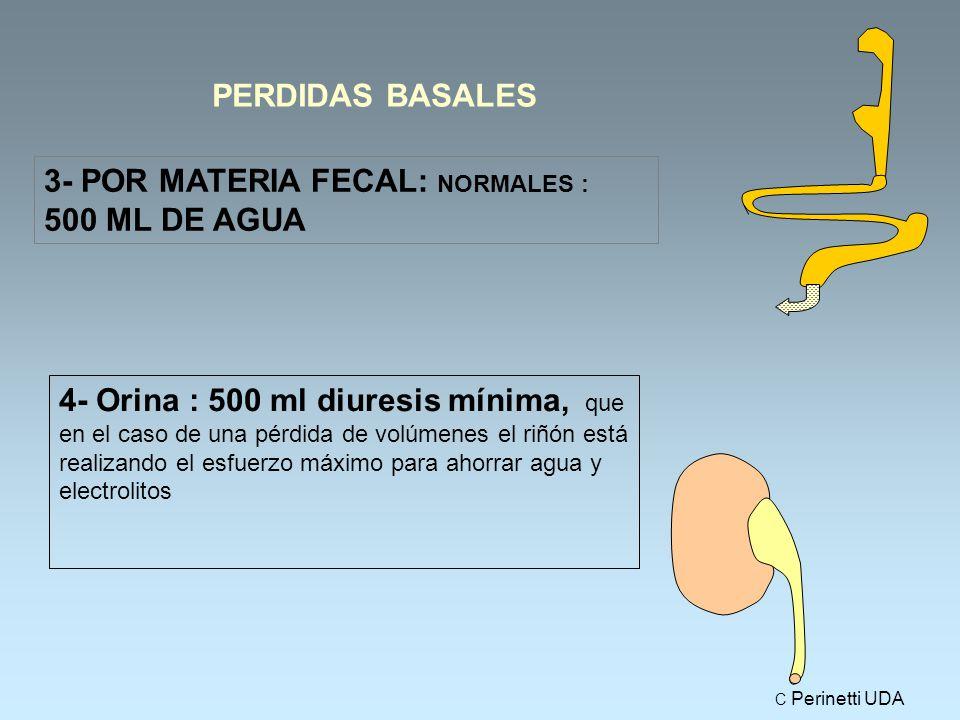 PERDIDAS BASALES 3- POR MATERIA FECAL: NORMALES : 500 ML DE AGUA 4- Orina : 500 ml diuresis mínima, que en el caso de una pérdida de volúmenes el riñón está realizando el esfuerzo máximo para ahorrar agua y electrolitos C Perinetti UDA