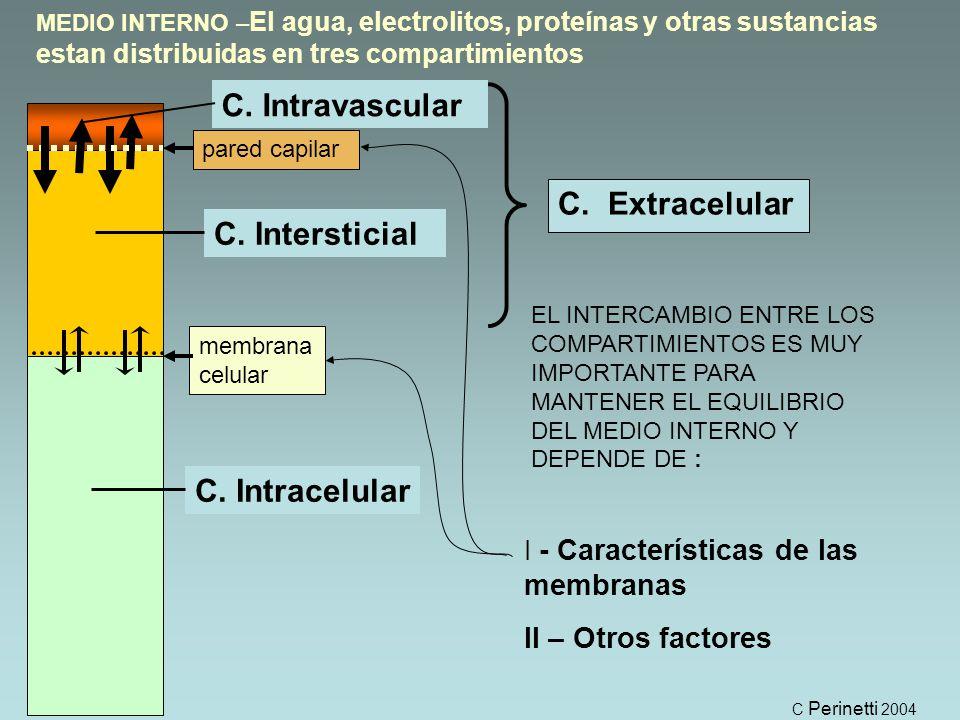 EL INTERCAMBIO ENTRE LOS COMPARTIMIENTOS ES MUY IMPORTANTE PARA MANTENER EL EQUILIBRIO DEL MEDIO INTERNO Y DEPENDE DE : I - Características de las membranas II – Otros factores pared capilar membrana celular MEDIO INTERNO – El agua, electrolitos, proteínas y otras sustancias estan distribuidas en tres compartimientos C.