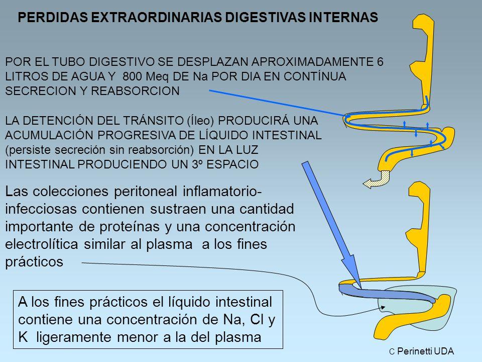 PERDIDAS EXTRAORDINARIAS DIGESTIVAS INTERNAS POR EL TUBO DIGESTIVO SE DESPLAZAN APROXIMADAMENTE 6 LITROS DE AGUA Y 800 Meq DE Na POR DIA EN CONTÍNUA SECRECION Y REABSORCION LA DETENCIÓN DEL TRÁNSITO (Íleo) PRODUCIRÁ UNA ACUMULACIÓN PROGRESIVA DE LÍQUIDO INTESTINAL (persiste secreción sin reabsorción) EN LA LUZ INTESTINAL PRODUCIENDO UN 3º ESPACIO A los fines prácticos el líquido intestinal contiene una concentración de Na, Cl y K ligeramente menor a la del plasma Las colecciones peritoneal inflamatorio- infecciosas contienen sustraen una cantidad importante de proteínas y una concentración electrolítica similar al plasma a los fines prácticos C Perinetti UDA