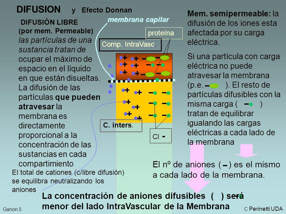 DIFUSION y Efecto Donnan DIFUSIÓN LIBRE (por mem.