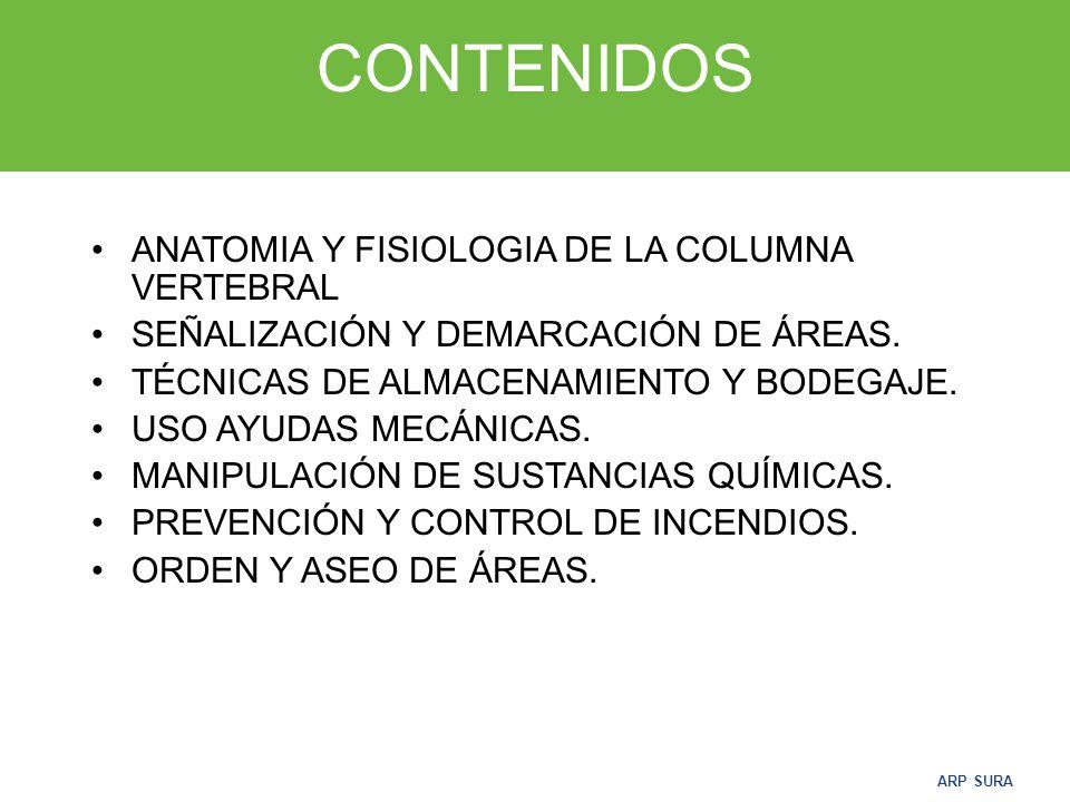 ARP SURA CONTENIDOS ANATOMIA Y FISIOLOGIA DE LA COLUMNA VERTEBRAL SEÑALIZACIÓN Y DEMARCACIÓN DE ÁREAS.