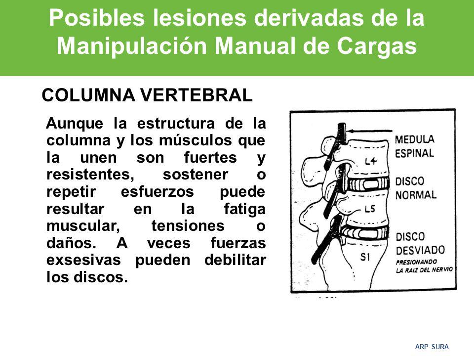 ARP SURA 3.Adoptar la postura de levantamiento: –- Doblar las piernas manteniendo en todo momento la espalda derecha y el mentón metido.