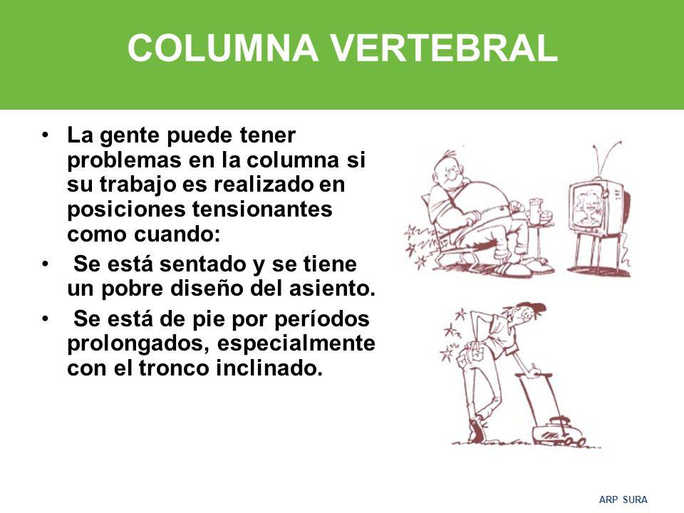 ARP SURA COLUMNA VERTEBRAL La gente puede tener problemas en la columna si su trabajo es realizado en posiciones tensionantes como cuando: Se está sentado y se tiene un pobre diseño del asiento.